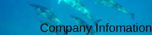 Company-Infomation